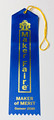 Maker of Merit Ribbon Denver Maker Faire 2018